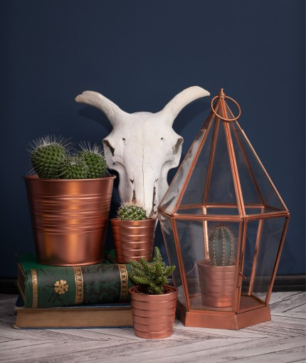 Metallic Spray Paint - Metallic Bright Copper Plant Pots