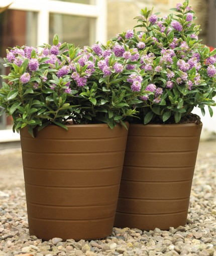 Natural Effects (Brush) - Natural Effects Cast Bronze Planters