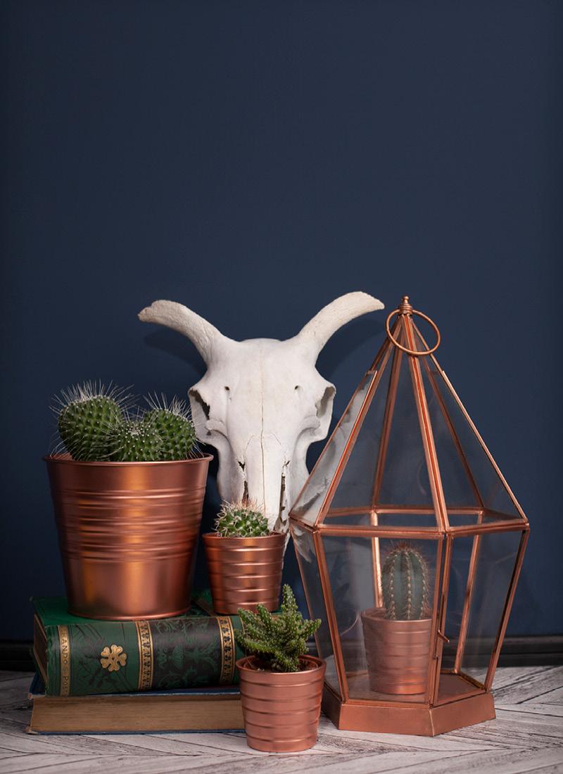 copperplantpots