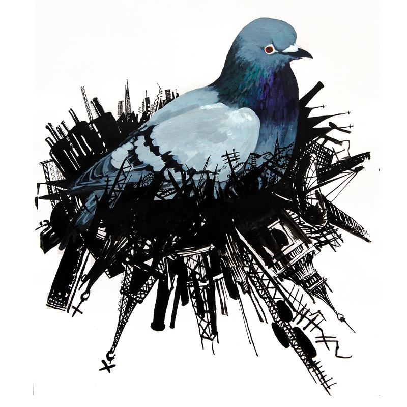gianinna-delpino-pigeon