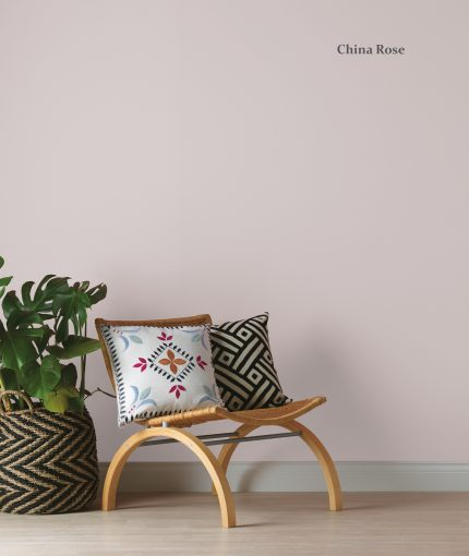 Chalky Finish Wall Paint - ProductSlider-Template2